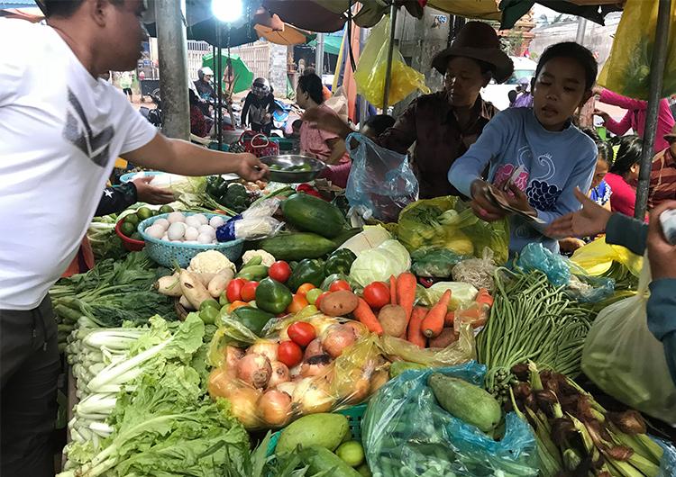 衛生的な調理場から安全な食事を カンボジア 栄養管理